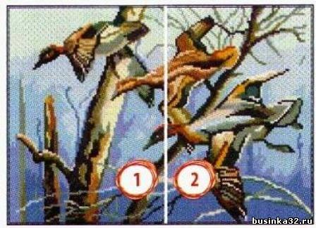 В журнале по вышивке крестом представлено 8 цветных схем различной тематики: Сапог с цветами, Утки, Нежные лилии...