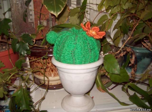 Описание: схема вязания крючком кактусов.
